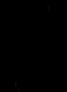 Raku 1