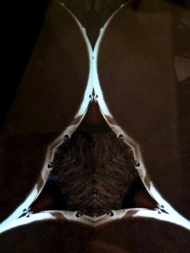 Initiation au chamanisme magique du travailleur de lumière 2