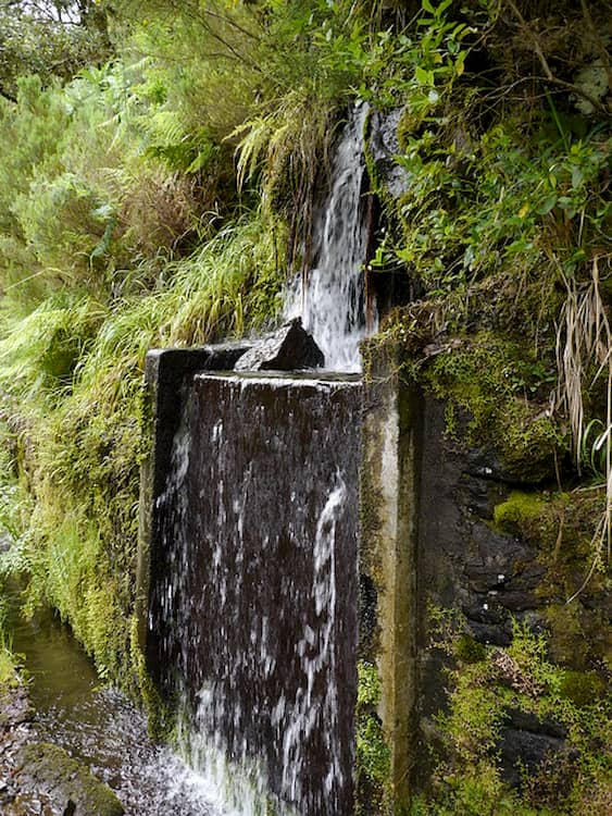 Fontaine de vie